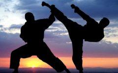 Martial Arts at Lakeside