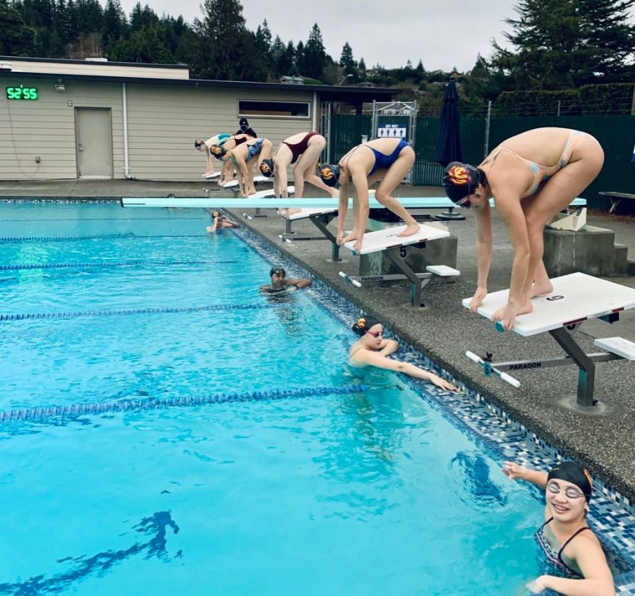 First swim and dive practice 1(Rohde)